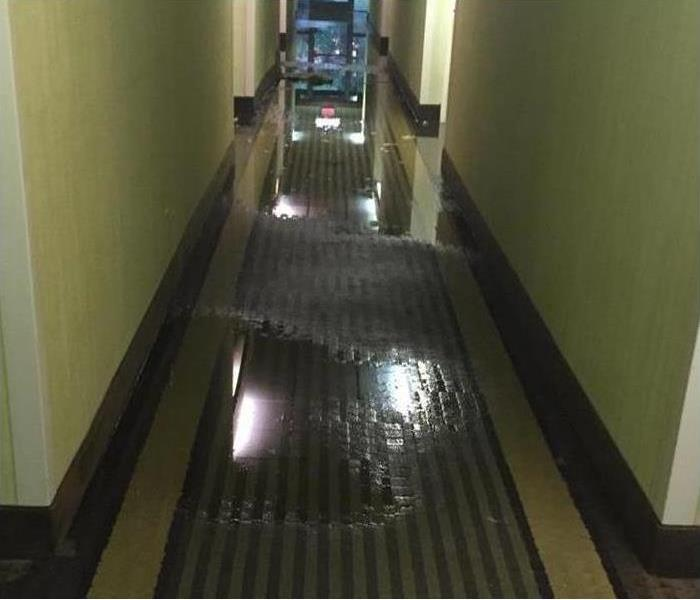 Flood in Miami Beach Condominiums