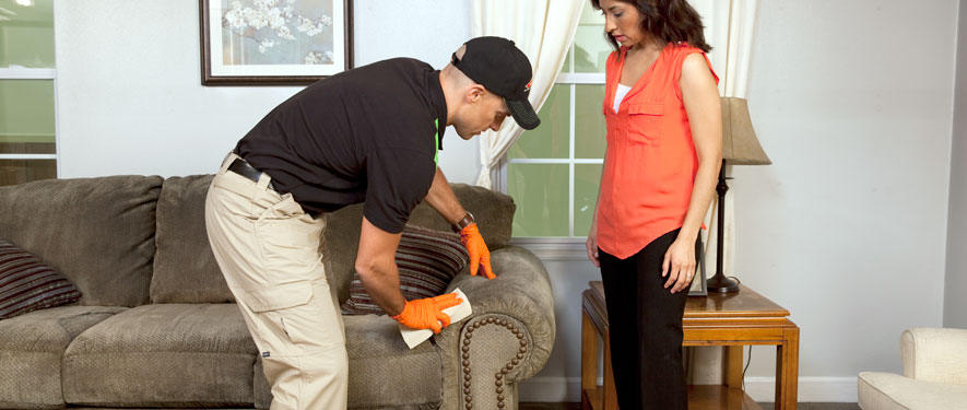 Miami Beach, FL carpet upholstery cleaning